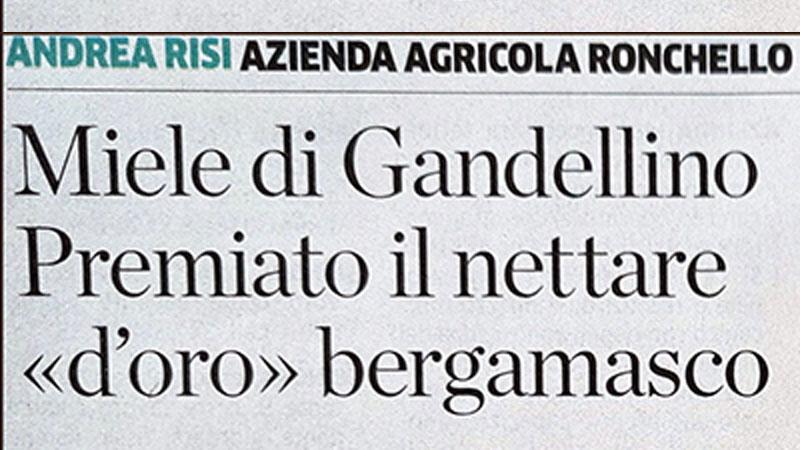 Miele di Gandellino Premiato – Articolo Eco di Bergamo